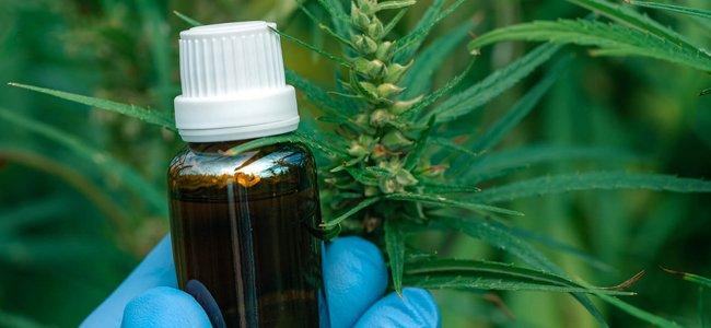 L'achat de produits à base de cannabis thérapeutique