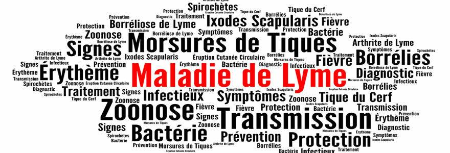 Les manifestations cliniques de la borréliose de lyme