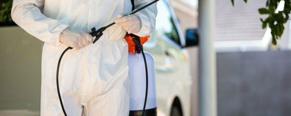Services d'un expert dans la désinfection et la décontamination